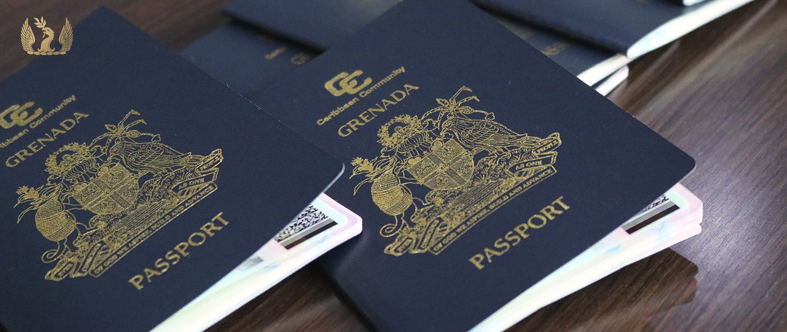 Grenada passport allows visa-free and visa-on-arrival travel to 120+ countries.