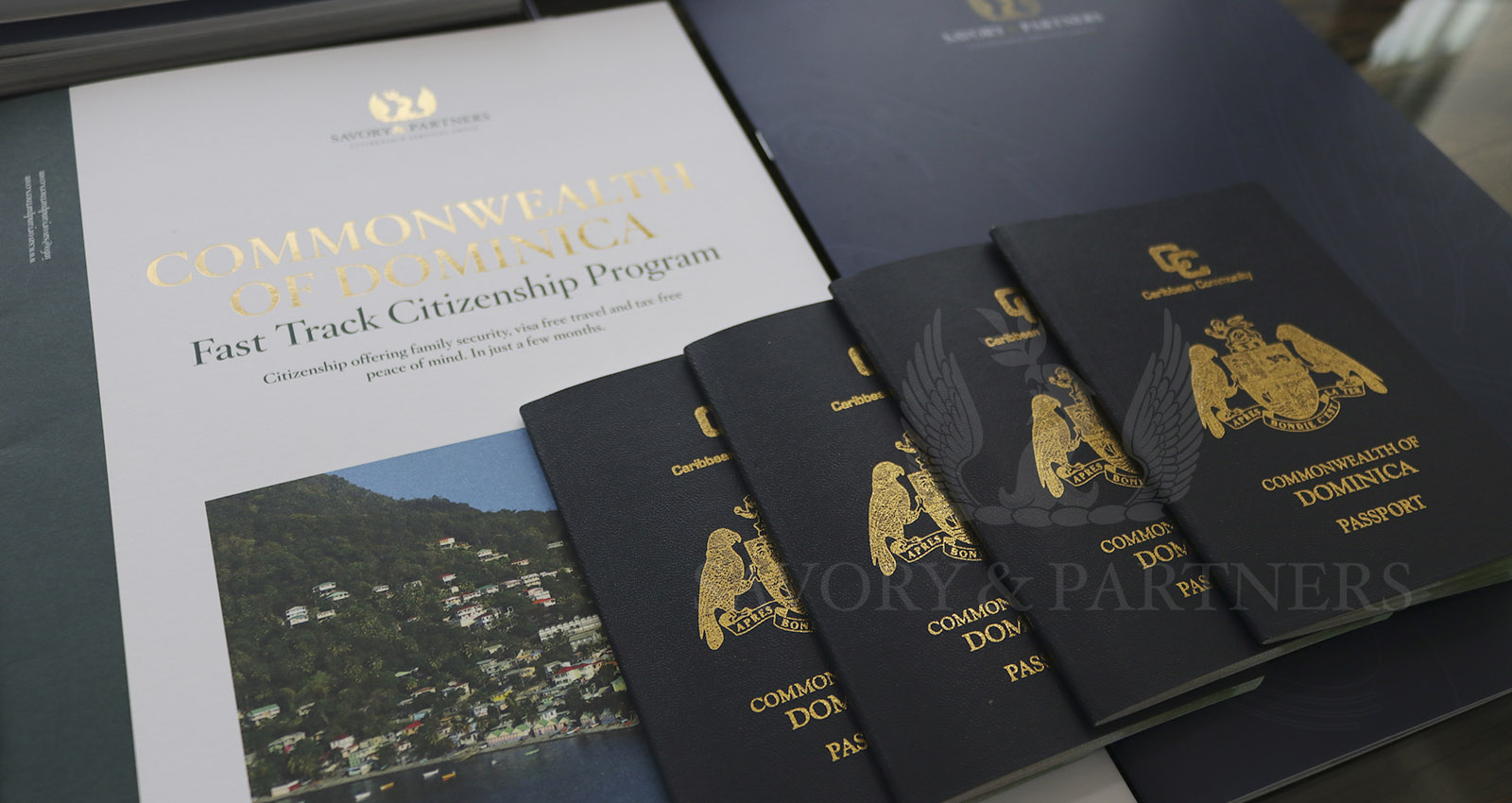 Dominica: Transforming the healthcare system through its Citizenship by Investment Program