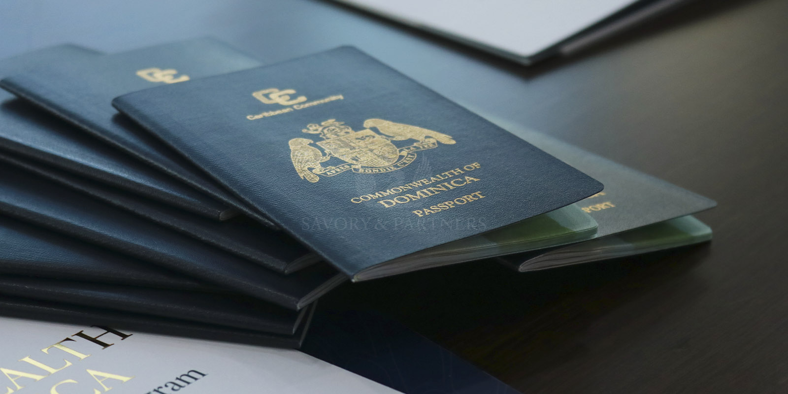 New Changes to Dominica Citizenship by Investment Program - All You Need to Know